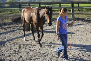 Ranch Lentigny Julie