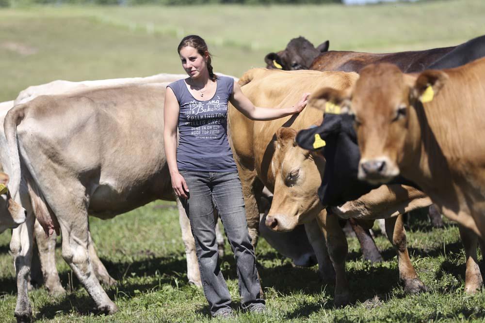 Ranch Lentigny Vaches